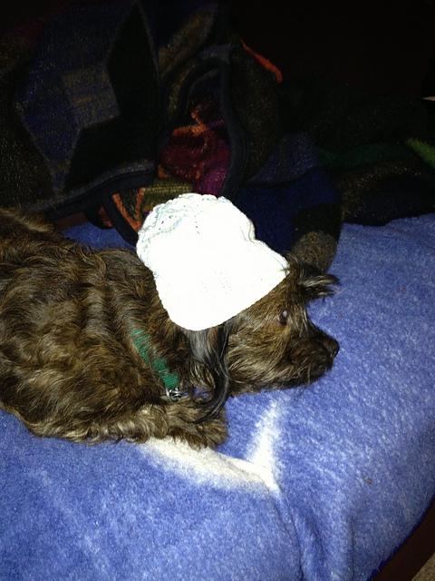 Charlie Modelling Baby Hat Take 1